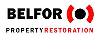 providing emergency storage containers for Belfor